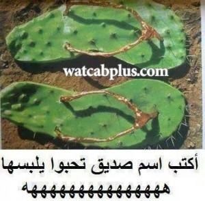 صور الواتساب watsab images صور واتس اب whatsapp plus تحياتي